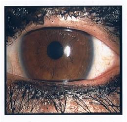 eyemake